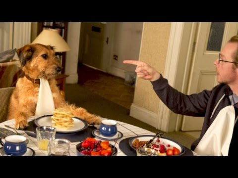 ABSOLUTELY ANYTHING Bande Annonce VF