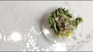 宝塚受験生のダイエットレシピ〜りんごとアイスプラントのサラダ〜