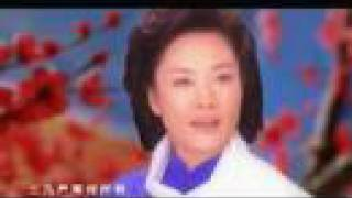 彭丽媛演唱的《红梅赞》MV Hong Mei Zan,classic chinese song