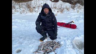 Рыбалка на реке пышма становая 2020