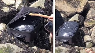 video: Watch: Teenagers on Tik Tok film moment they find suitcase containing body parts