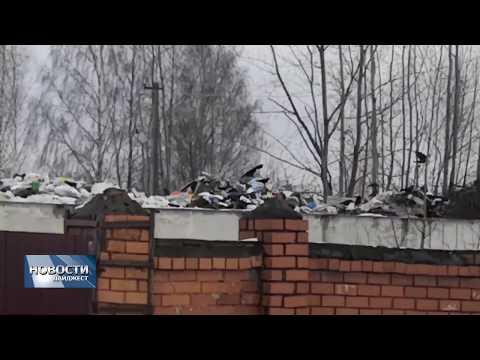 Новости Псков 11.02.2020 / Псковичей беспокоит растущая гора мусора на территории «Мехуборки»