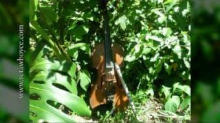 Celtic Violin - Down by the Sally Gardens - Strings, Harp and Tin Whistle
