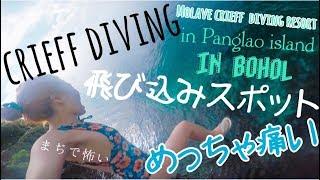 超穴場!飛び込みスポットcrieffdivinginPanglaoisland韓国語ちょっと学べる