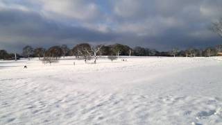 preview picture of video 'Morden Park Bliss 18 Dec 2010 Nokia N8 HD'