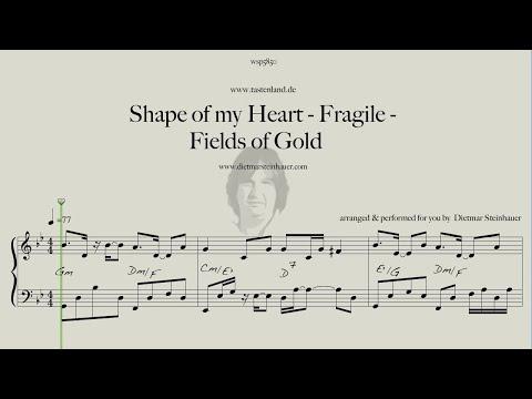 Shape of my Heart - Fragile - Fields of Gold