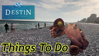 Things To Do In Destin Florida 2020 With The Legend