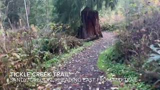 Hyperlapse of Tickle Creek Trail from roughly the midpoint to the East parking.