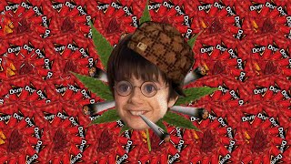 Harry Potter and the MLG Stoner [MLG Harry Potter]