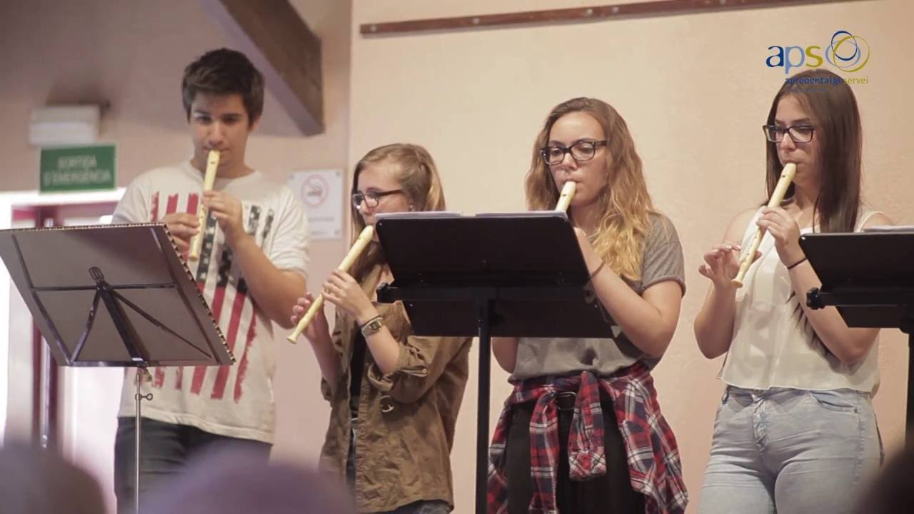 Experiència Aprenentatge Servei (APS) - Musicavis
