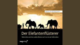 Kapitel 39   Der Elefantenflüsterer