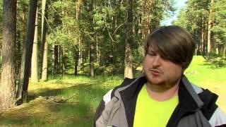 Специалисты коммунальных служб и ученые борются за спасение Стропского леса