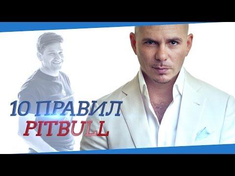 PitBull. 10 правил жизни от PitBull