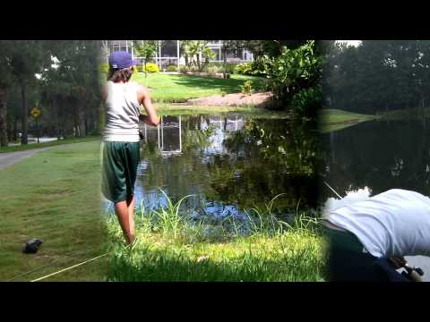 Bass Fishing in Golf Course Ponds [Part 2]