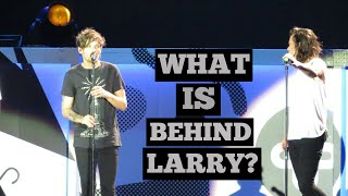 What Is Behind Harry + Louis? (Larry Stylinson 2010 2015)