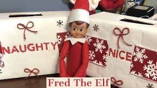 Naughty or Nice   Elf on The Shelf