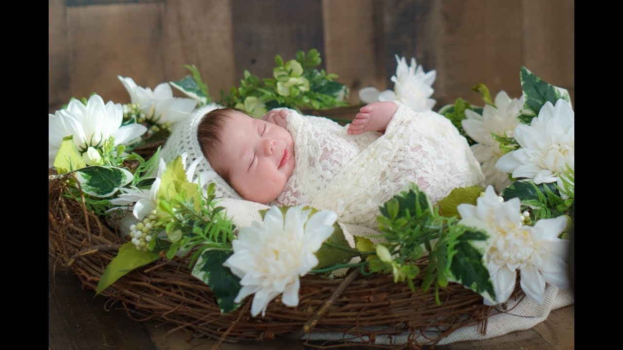 Pricing - Little Life Studio Newborn Photography Prices in CT