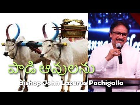 Bishop John Lazarus Pachigalla || పాడి ఆవులను || New Cart and Two Milk Cows