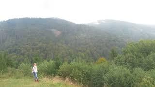 Вид с вершины горы ,Закарпатье