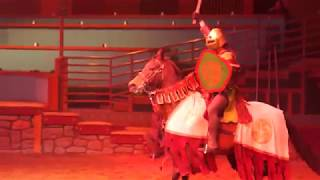 Tournament of Kings Medieval Fight/Performance