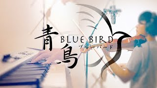 SLSMusic 火影忍者疾風傳 Naruto Shippuden OP3 青鳥 Blue Bird   生物股長 Violin & Piano Cover