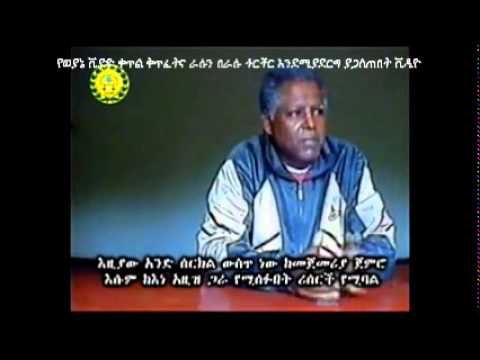 TPLF Releases Another Propaganda Video on Andargachew: Sound of ...