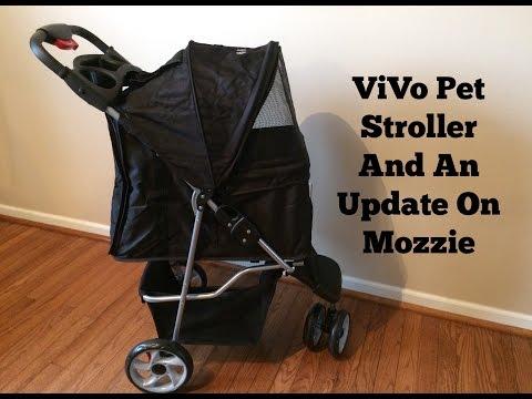 ViVo Pet Stroller | Update On Mozzie | Schnauzer