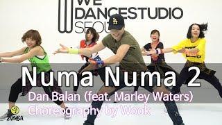 Numa Numa 2   Dan Balan (feat. Marley Waters)  Dance Fitness Choreography  Wook's Zumba® Story
