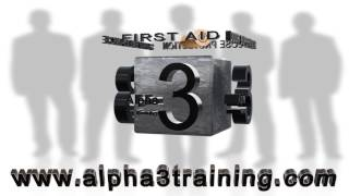 preview picture of video 'Alpha 3 Training Southend on Sea Essex'