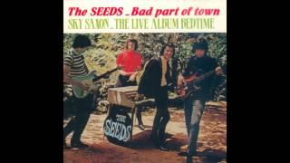 The Seeds - Pushing Too Hard Too Far
