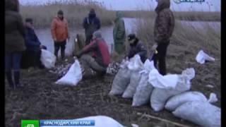 Рыбоохрана России. Охотников за таранью отлавливают беспилотники