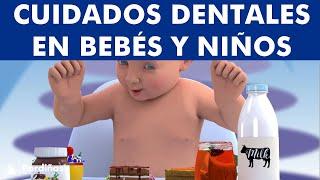 Cuidados dentales en niños. Dientes de leche ¿Cuándo salen y cómo lavarlos?