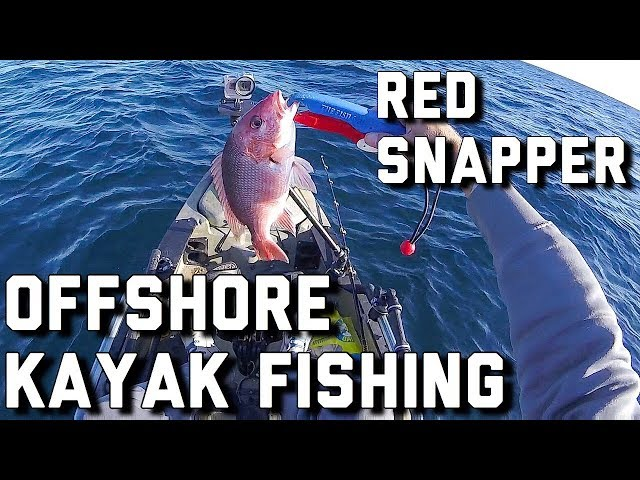 Offshore Kayak Fishing- Red snapper in the Gulf Of Mexico- Florida Trigger fish opener