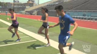 Steeplechase: How Hard Can It Be?