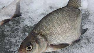 Рыбалка гирлянда из чертиков