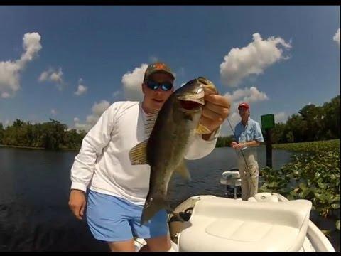 St. Johns River Florida Bass Fishing