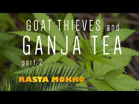 Goat Thieves and Ganja Tea part 2