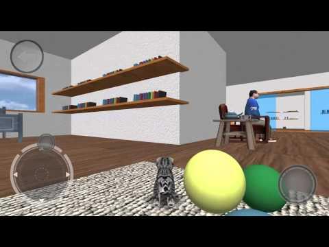 Video of Cat-Simulator