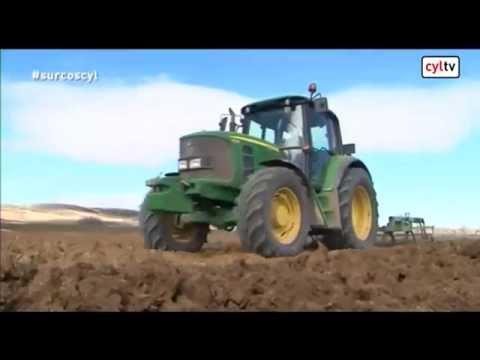 Fotograma del vídeo: Greening, acuerdo en el sector lácteo, cultivo del sorgo