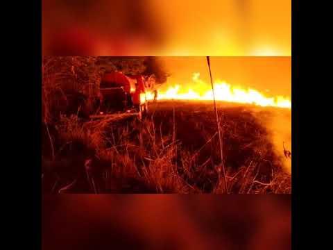 Incêndio atinge vegetação próxima a área urbana de Palmas