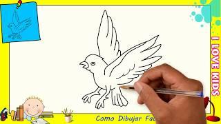 Como Dibujar Un Pajaro Paso A Paso Free Video Search Site Findclip