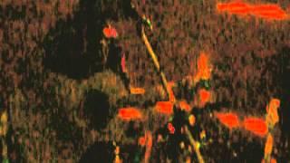 preview picture of video 'Árbol de la Vida (Viejas Locas) (cover) // Mentes Lúcidas - en la Parrilla del Tucu (Ensenada)'