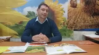 Гибрид кукурузы ВН 6763, ФАО 320. Высокоурожайные семена кукурузы ВН 6763 130-140ц/га, Отличная влагоотдача, ВНИС от компании ТД «АВС СТАНДАРТ УКРАЇНА» - видео