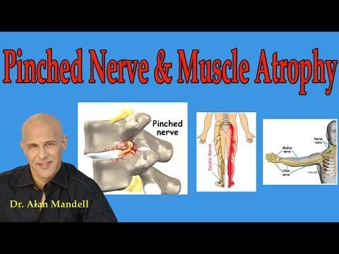 De base les exercices sur tous les groupes des muscles de la maison