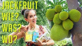 Jackfrucht Fleischersatz | Wo Kaufen | Rezeptideen| gelb oder grün | Alles über Jackfruit