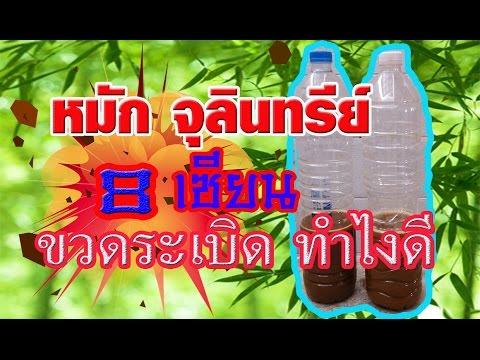 การทดสอบสำหรับ Tyumen ไข่