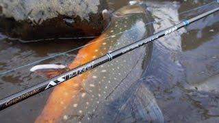 Голец арктический рыбалка 3 на что ловить