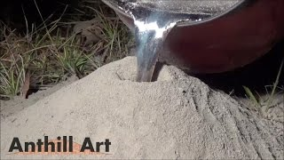 Casting a Fire Ant Colony with Molten Aluminum (Cast #043) - Video Youtube