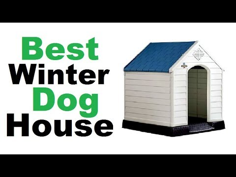 Winter Dog House- 10 Best Winter Dog House | Best Winter Dog House 2018 ||