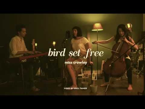 Miss Crowley - Bird Set Free (Sia Cover)